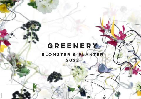 Greenery 2022 – Ny plante trendrapport