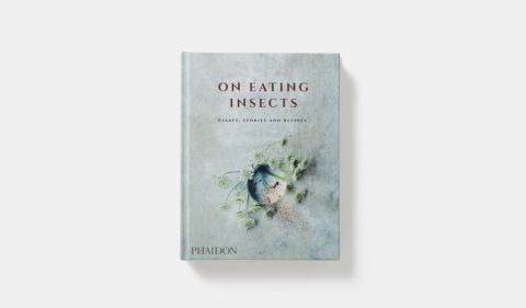 On eating insects