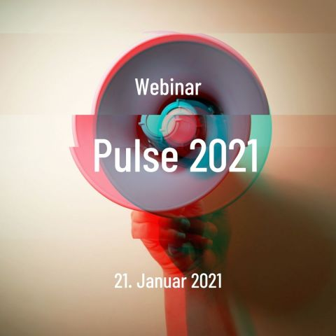 PULSE 2021 marketing webinar