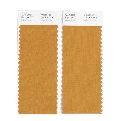 Pantone Swatch Card - 2 cuts 5x11 TCX