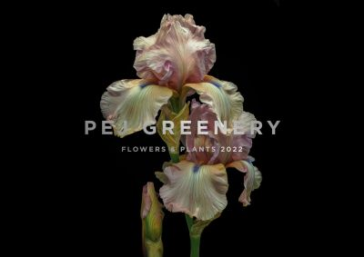 Greenery - Flowers & plants 2022